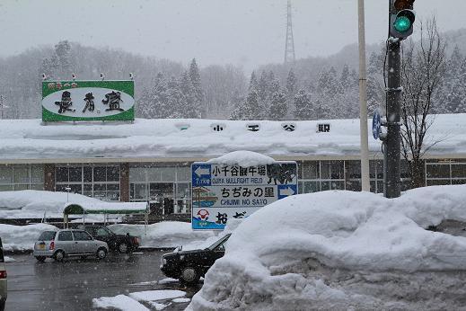 新潟・小千谷市】雪かきボランテ...